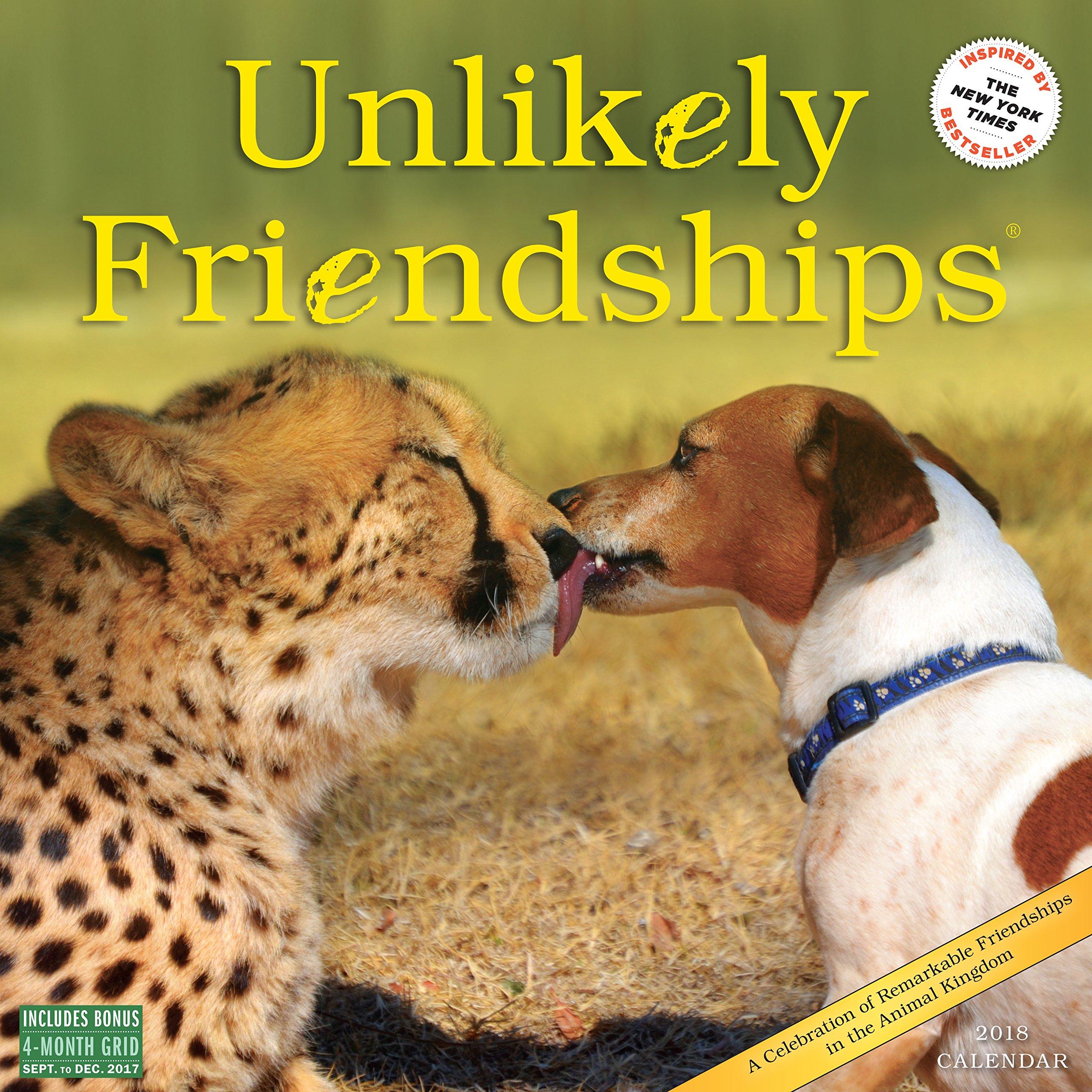 Unlikely Friendships Wall Calendar 2018 pdf