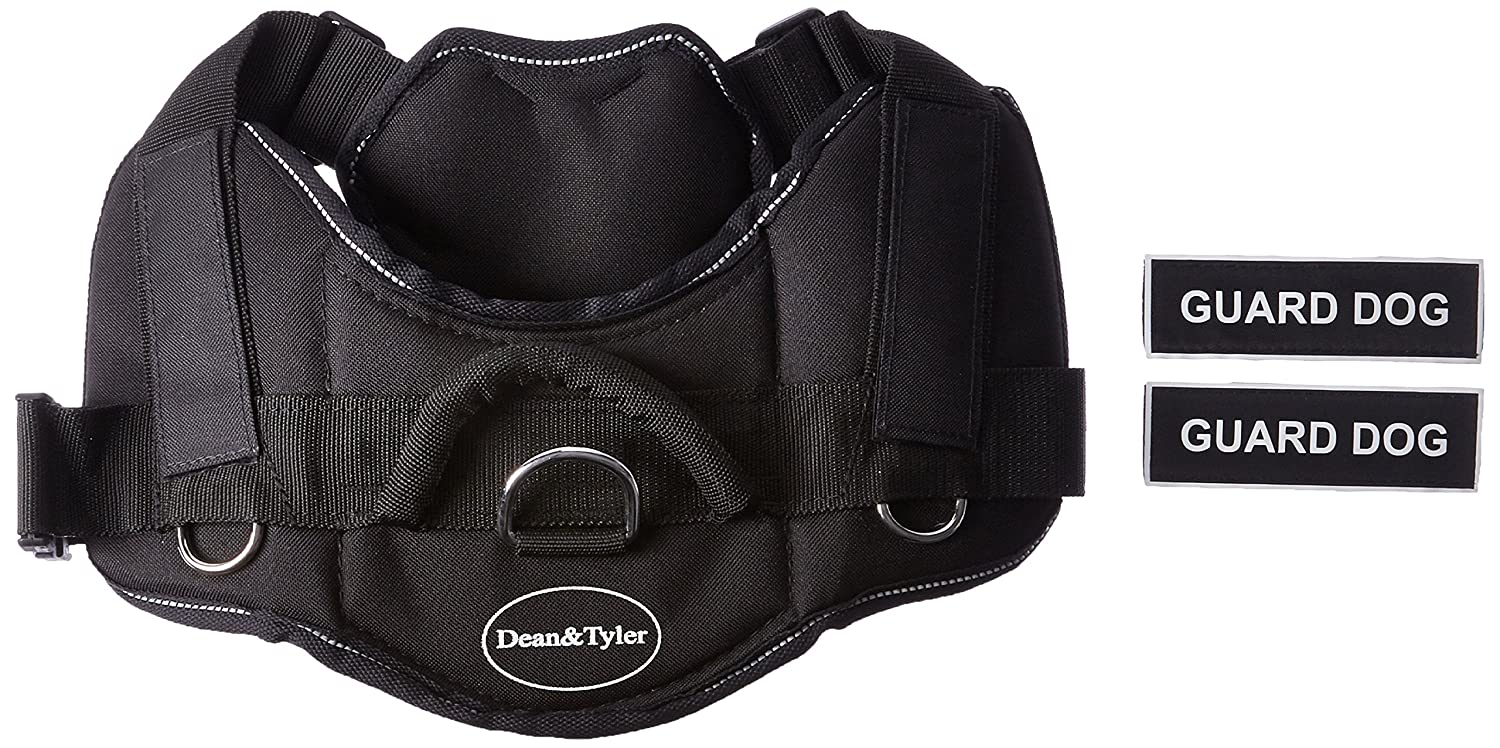 Dean & Tyler Black with Reflective Trim Fun Dog Harness with Padded Chest Piece, Guard Dog, Medium, Fits Girth Size 28-Inch to 34-Inch