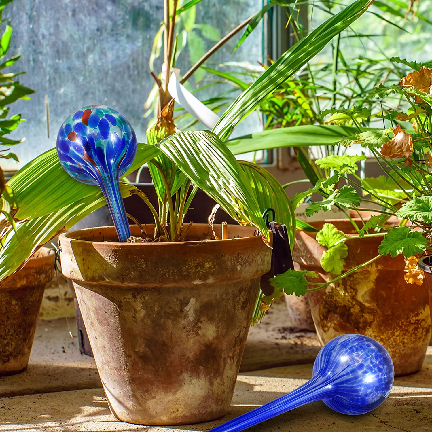 Amazon.com : Gardening Solutions Hydro Globes Automatic Watering ...