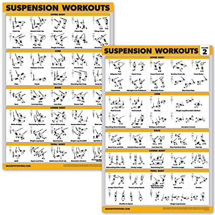 Amazon com : QuickFit 2 Pack Suspension Workout Posters