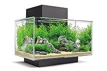 Fluval Aquarium Edge  : le meilleur milieu de gamme