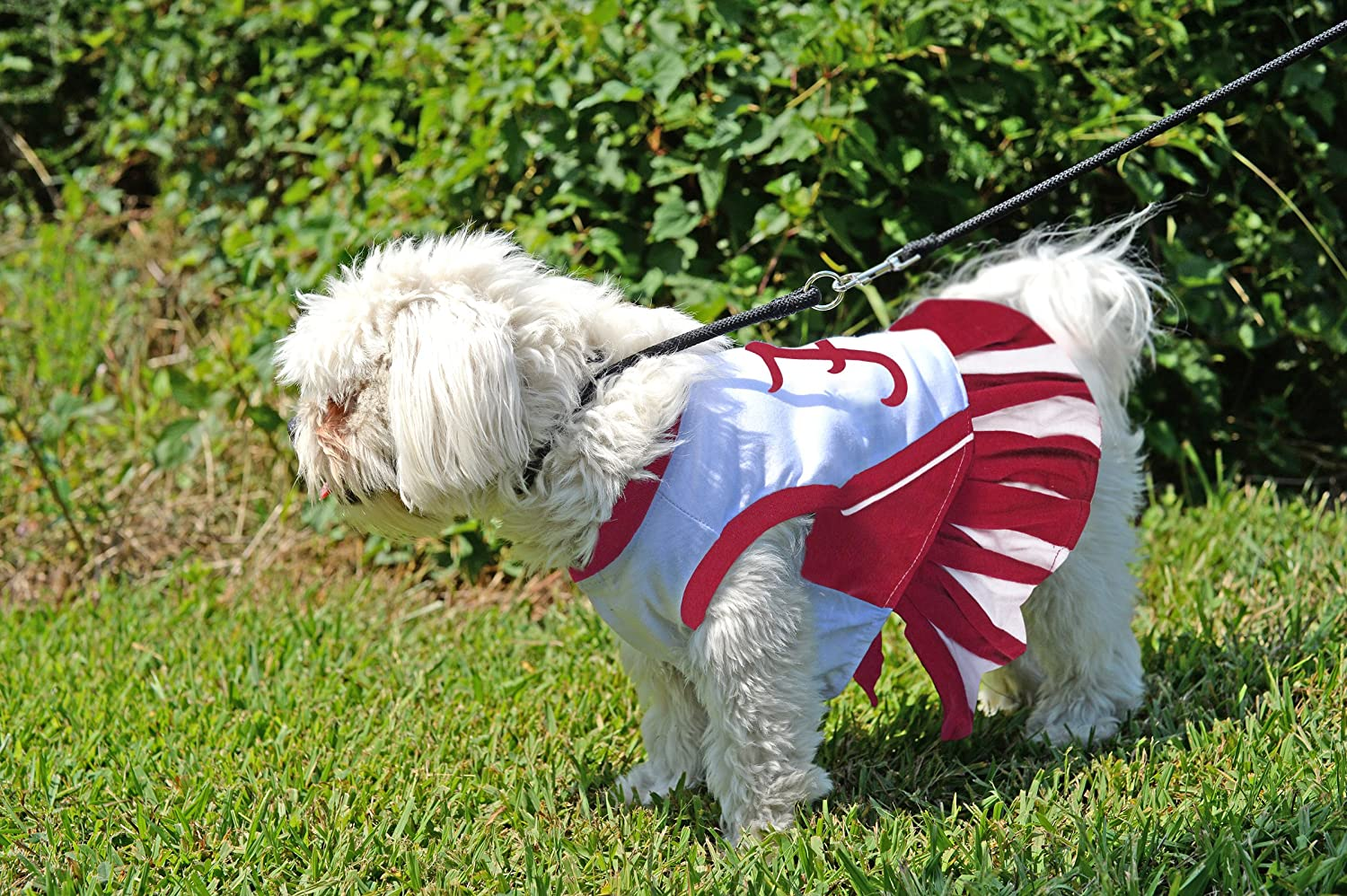 Amazon.com : Pets First NCAA Collegiate Alabama Crimson Tide Dog Cheerleader Dress : Pet Supplies