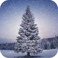Christmas Tree Wallpapers
