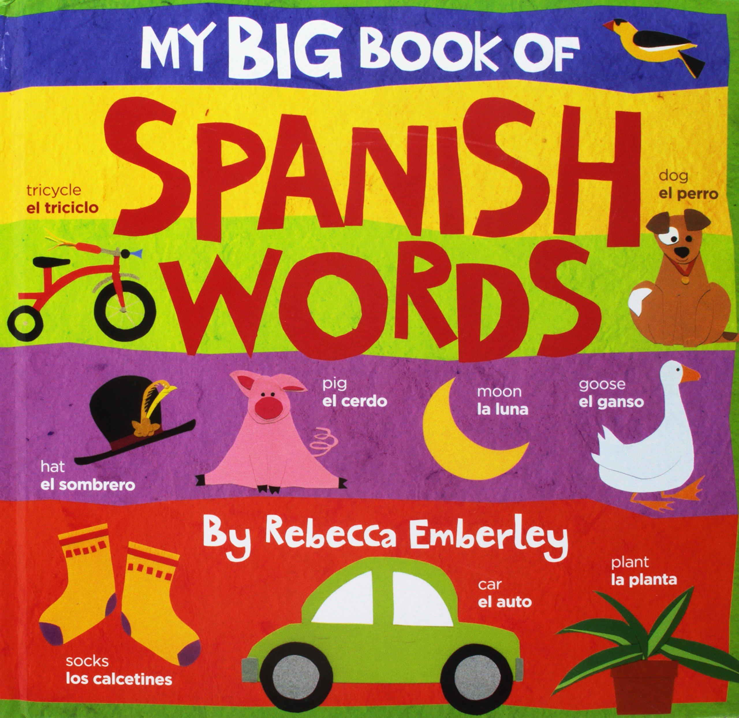 Read Online My Big Book of Spanish Words PDF