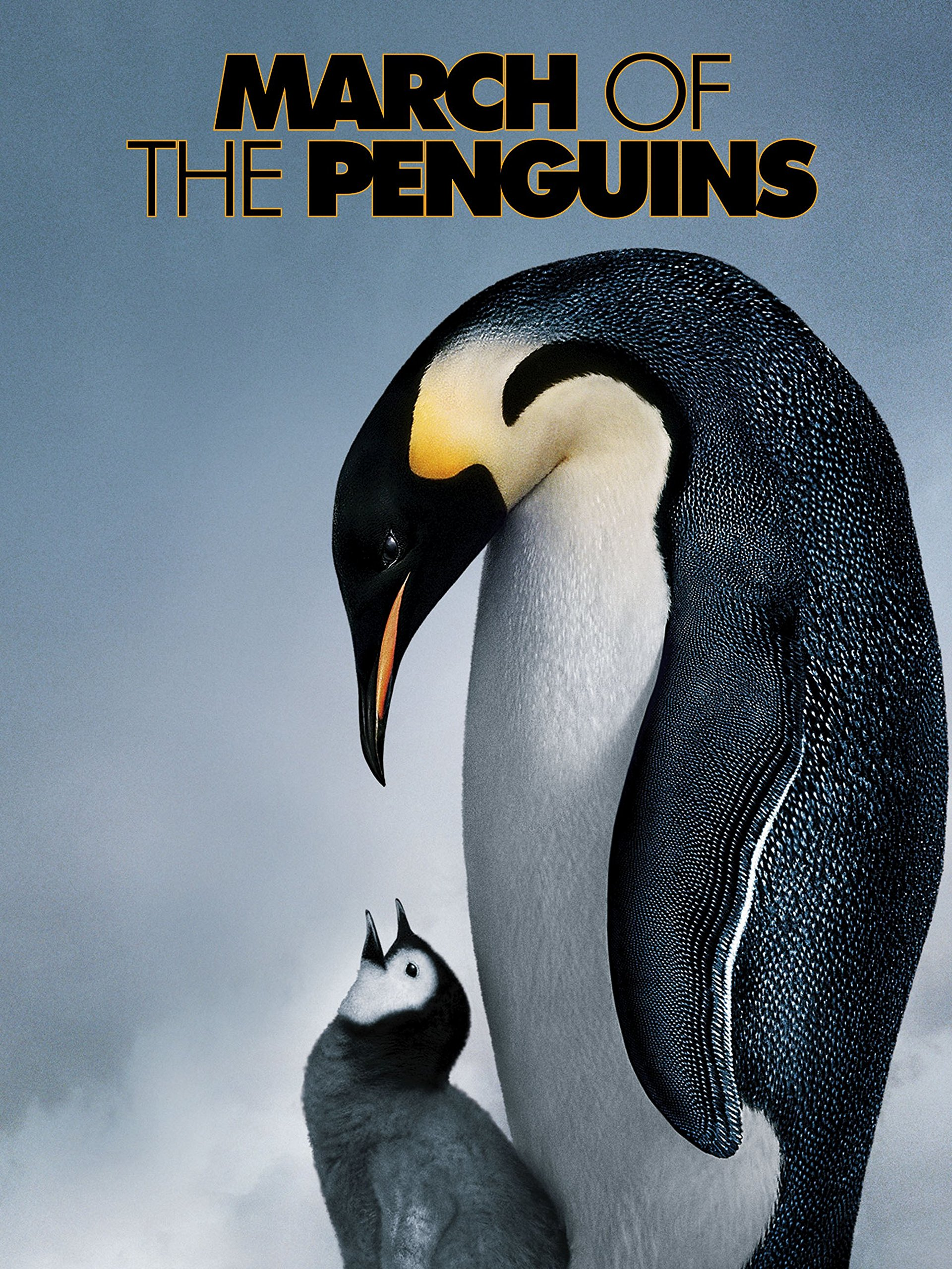 Amazon com: Watch March of the Penguins   Prime Video