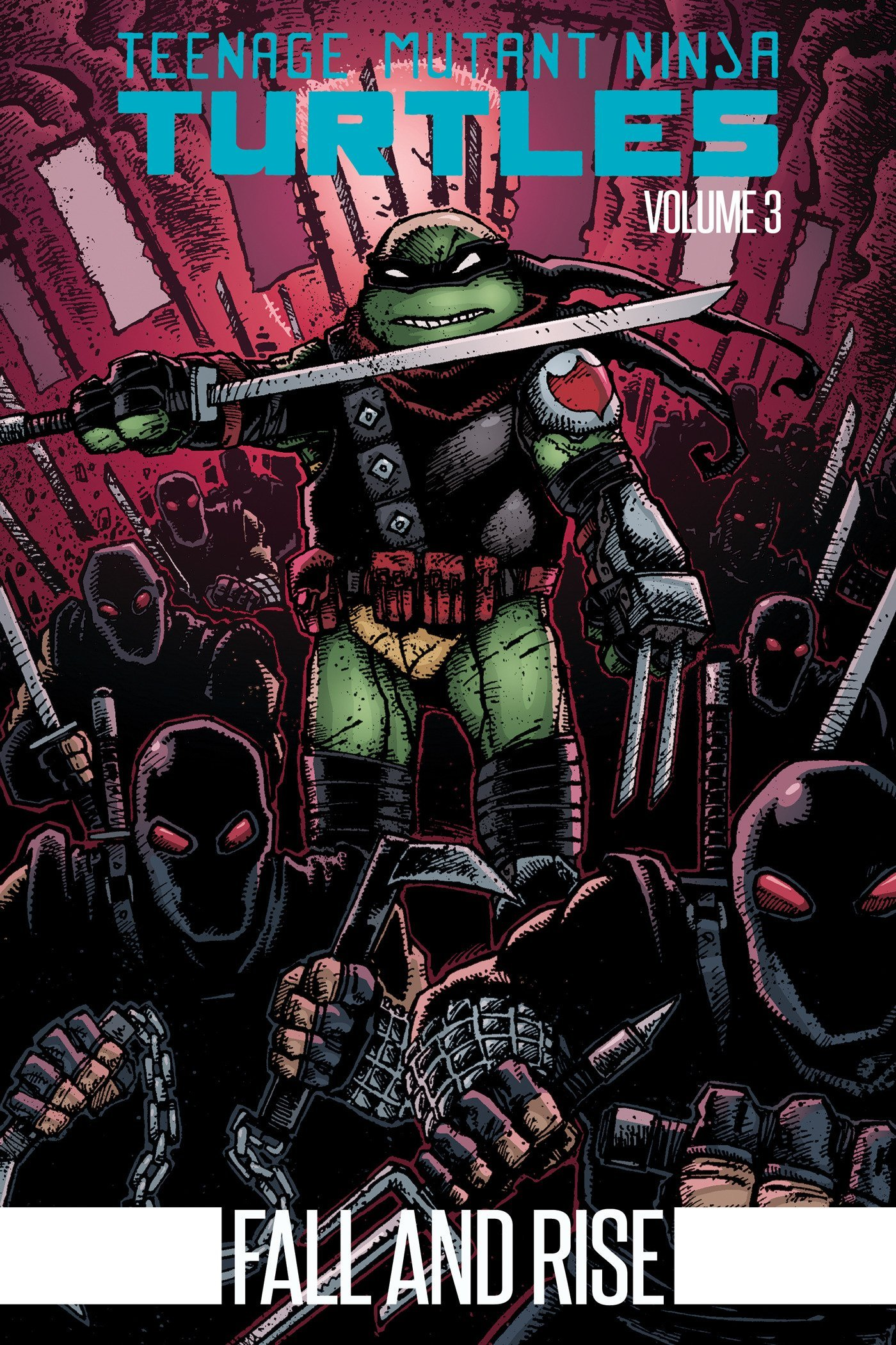 Teenage Mutant Ninja Turtles Volume 3: Fall and Rise: Amazon ...