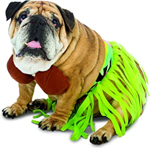 Rasta Imposta Funny Zelda Wisdom Hula Dog Pet Costume Halloween Bra Skirt Hawaii Hawaiian New