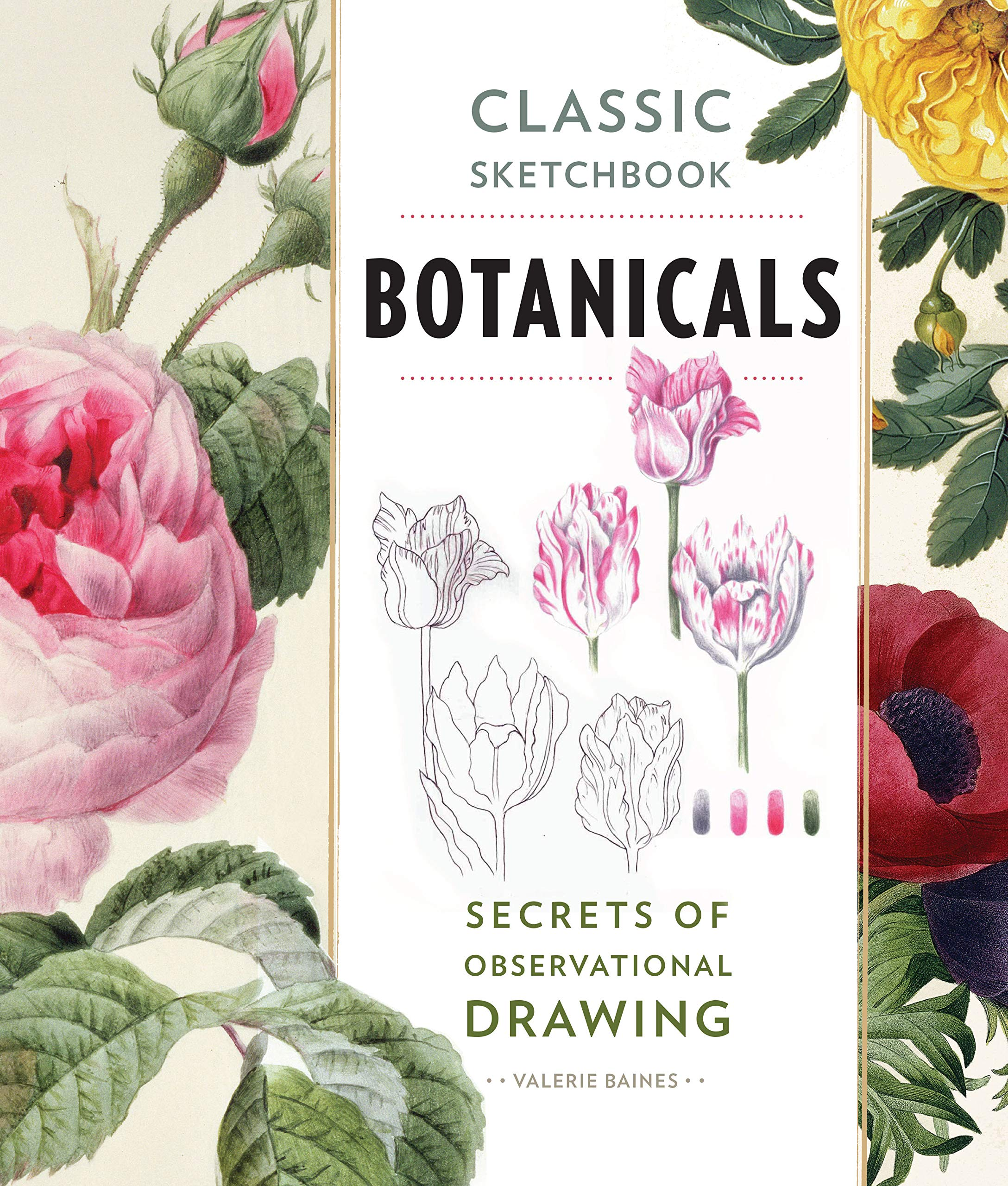 Download Classic Sketchbook: Botanicals: Secrets of Observational Drawing ebook