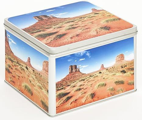 Álbum de fotos Metal – Lata Caja Almacenaje Caja Bote para galletas diseño Estados Unidos Mojave desierto: Amazon.es: Bebé