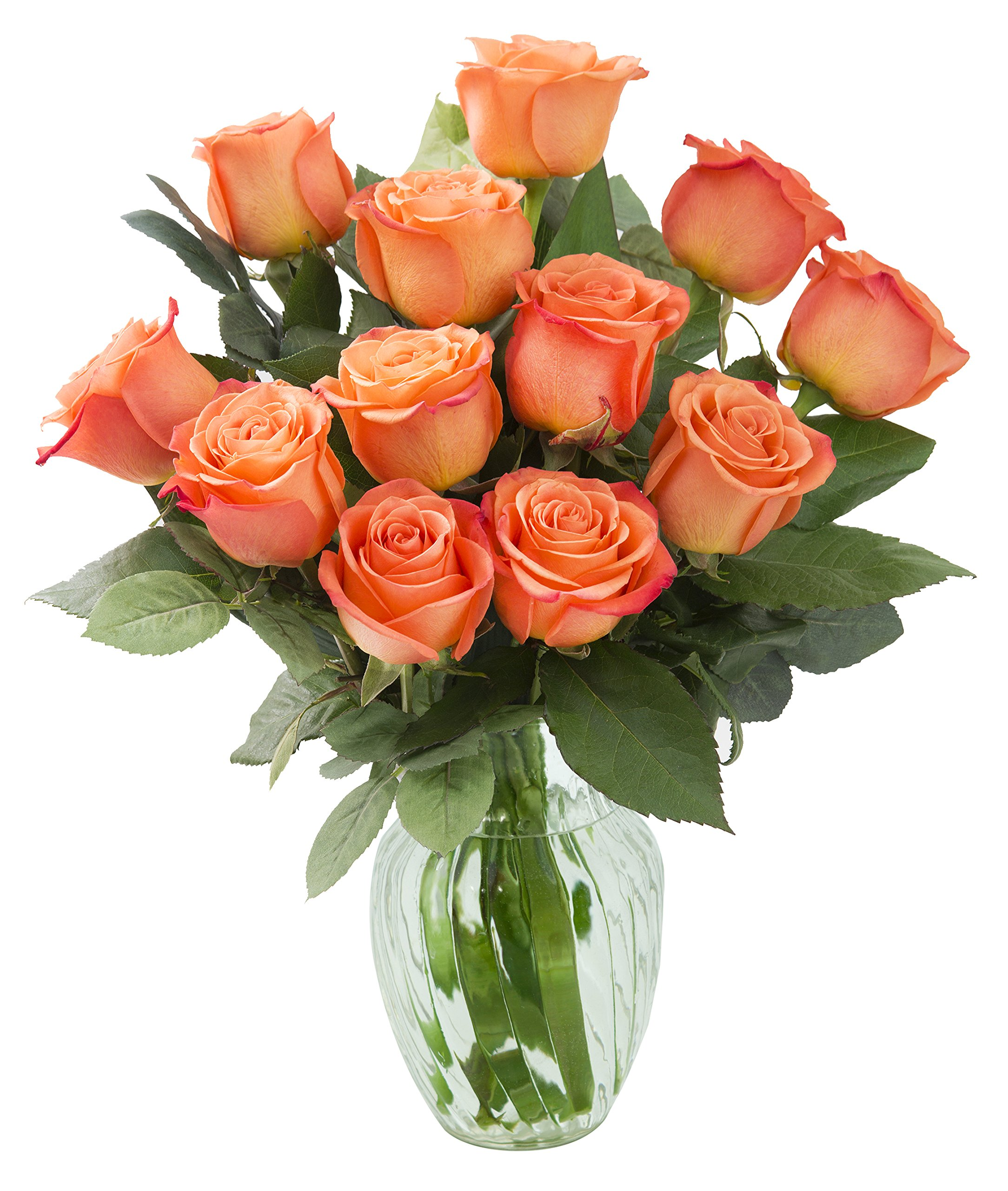Amazon.com : KaBloom Bouquet of 12 Fresh Cut Orange Roses (Long ...