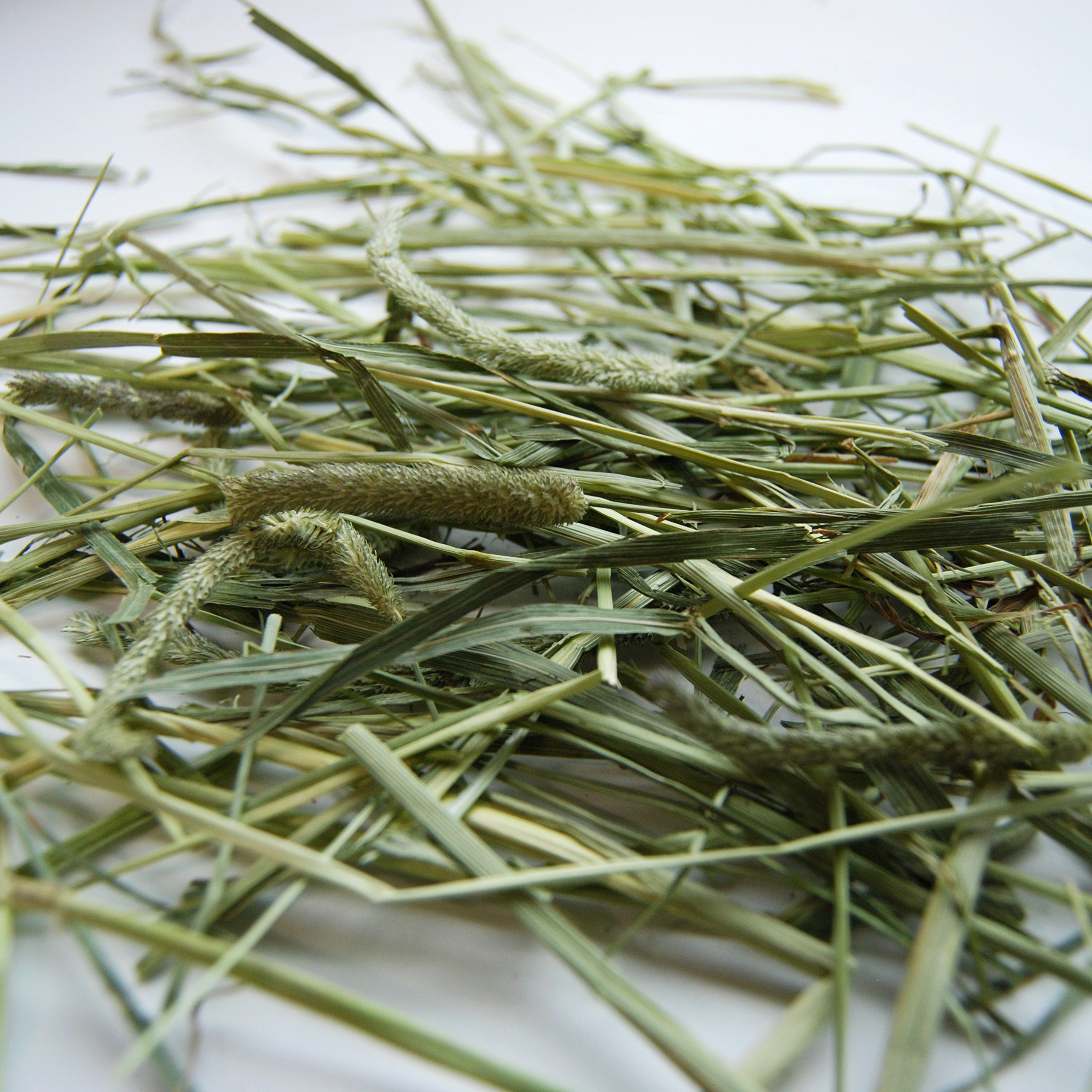 Carefresh Timothy Hay Pet Diet by Carefresh (Image #2)