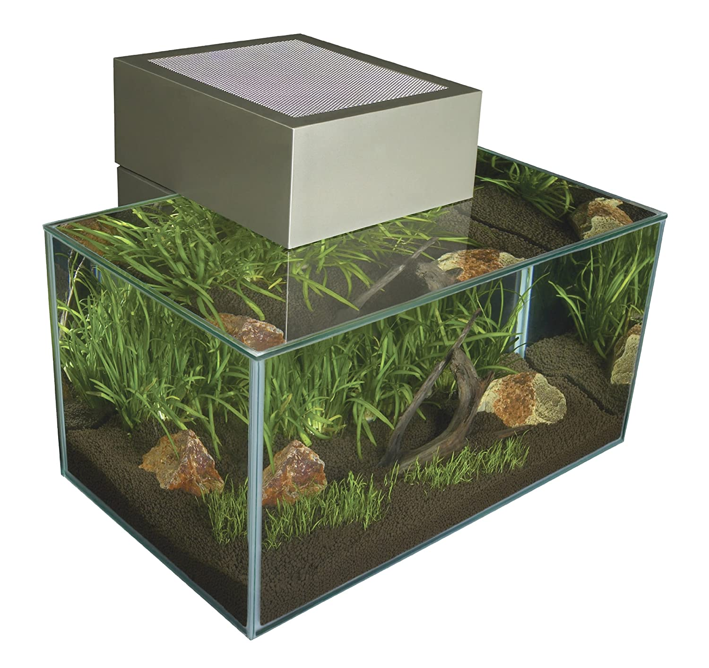 Amazon Fluval Edge Aquarium Set Pewter 6 Gallon Pet Supplies