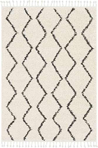 Armand Charcoal and Beige Bohemian Global Area Rug 2 x 3