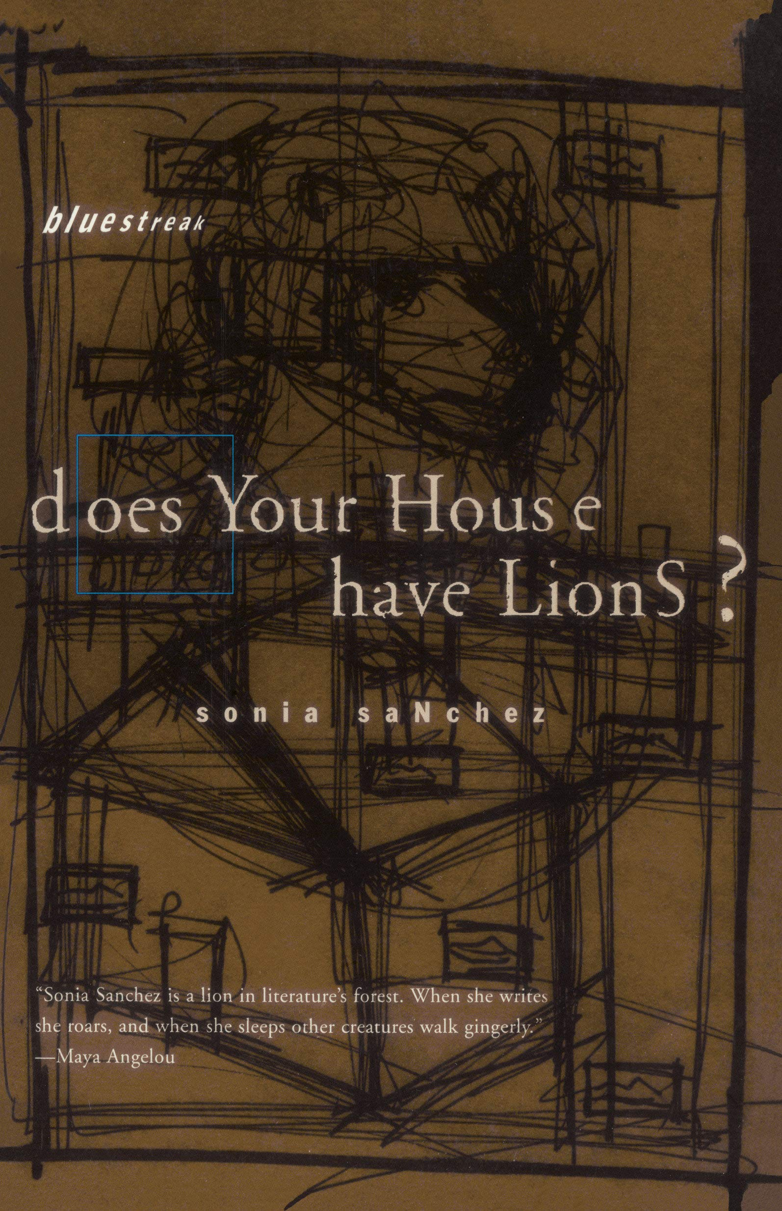 Amazon com: Does Your House Have Lions ? (9780807068311