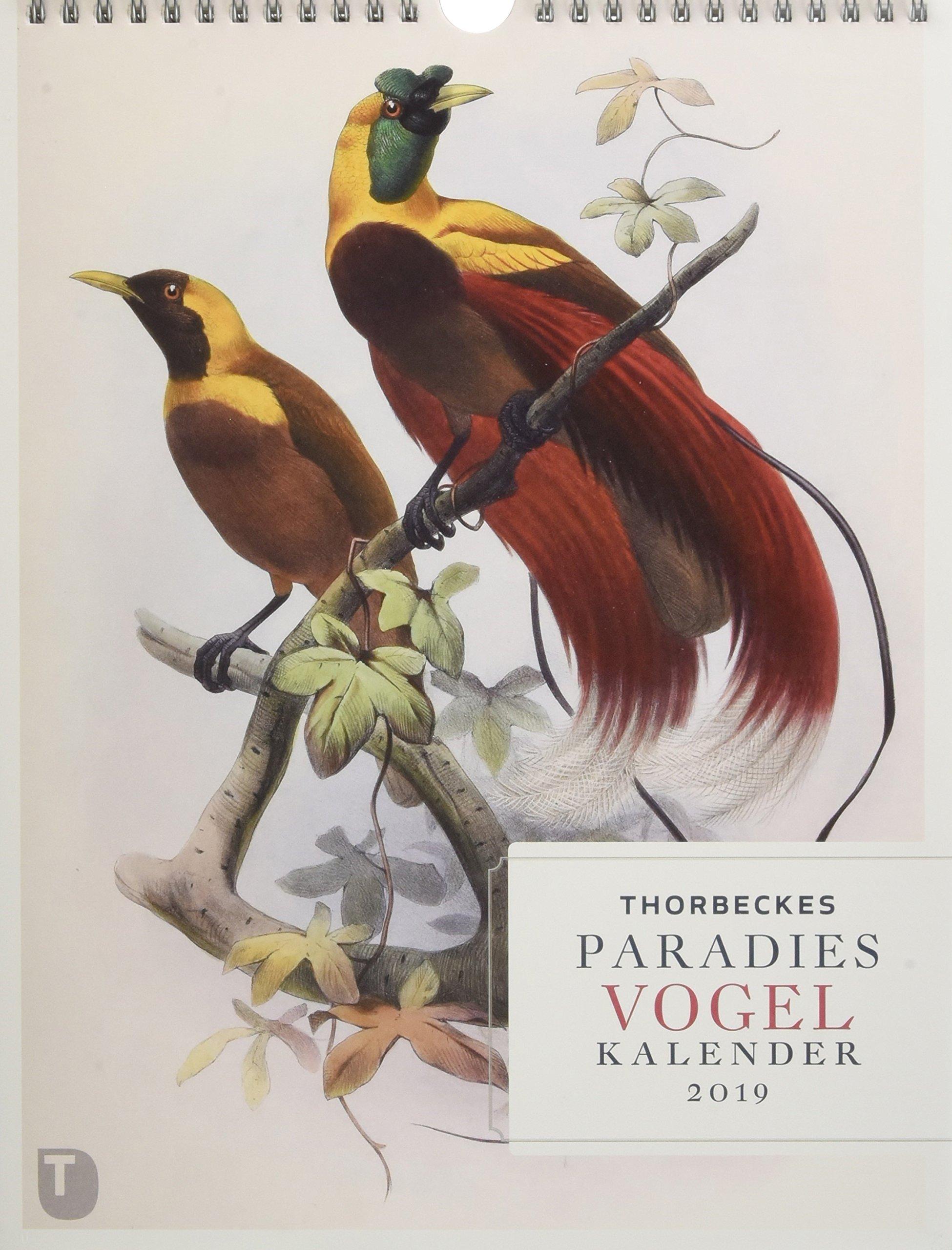 Thorbeckes Paradiesvogel Kalender 2019