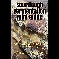 Sourdough Fermentation Mini Guide: A short guide to the sourdough fermentation process (SourdoughBaker's Mini Guides Book 1)