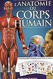 L'anatomie du corps humain: 24 grandes planches illustrées.