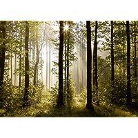 AG Design FTS 0181 Morgen Bos, papier fotobehang - 360x254 cm - 4 stuks, papier, multicolor, 0,1 x 360 x 254 cm