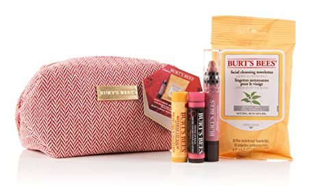 Burts Bees Burts Bees Burts Beauty Basics Set ...