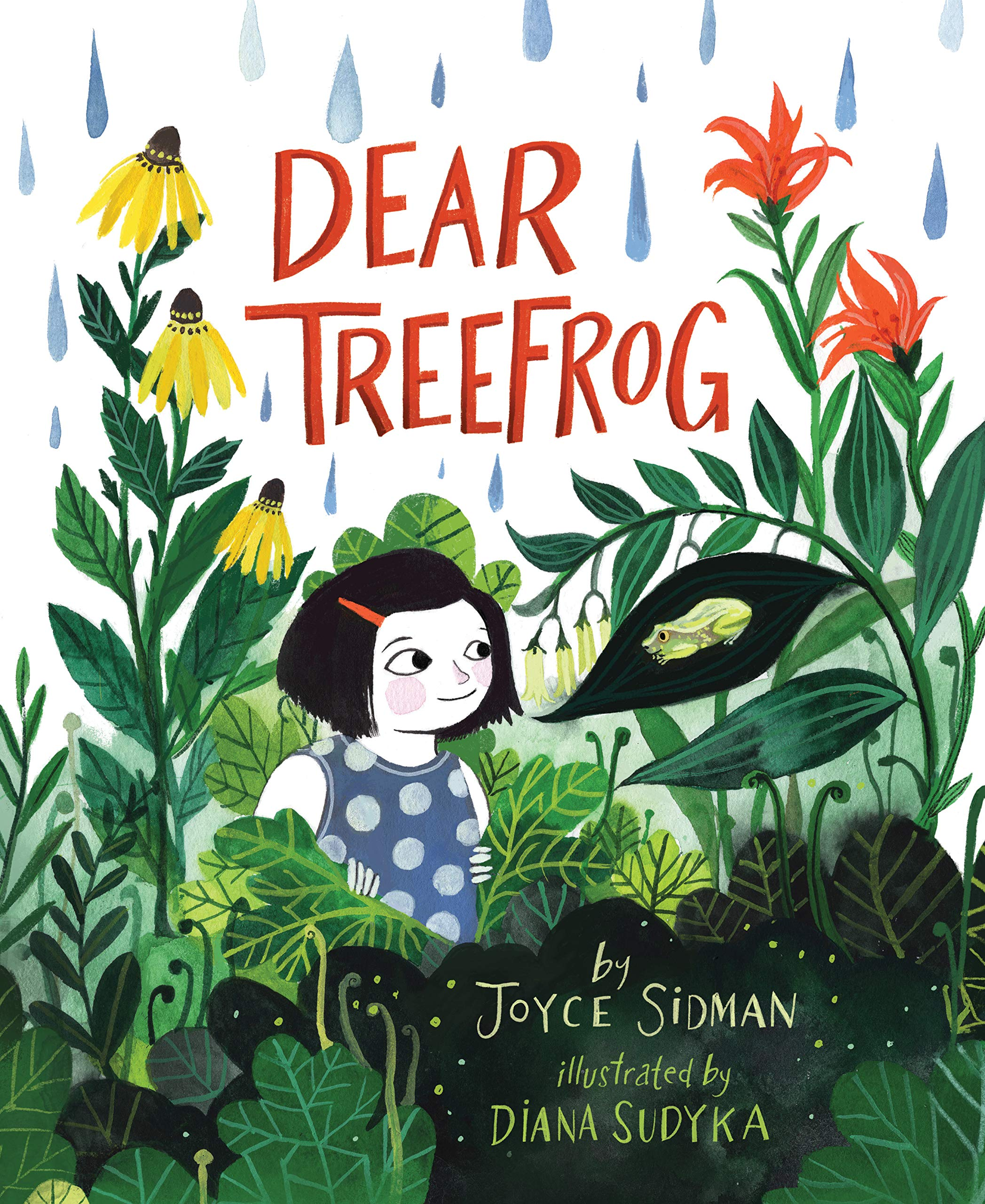 Dear Treefrog: Sidman, Joyce, Sudyka, Diana: 9780358064763: Amazon.com:  Books