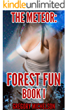 The Meteor (Forest Fun Book 1)