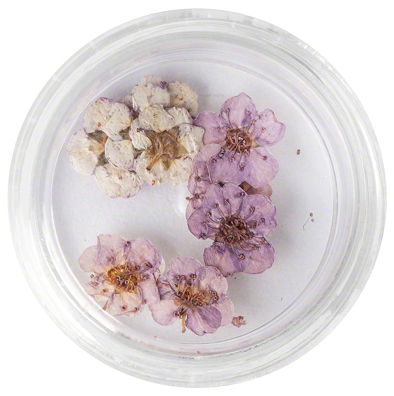 99Nails Nail Art Fleurs séchées Light Purple 99nails