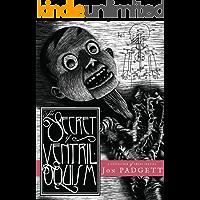 The Secret of Ventriloquism book cover