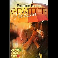 Gewitterherzen (German Edition)
