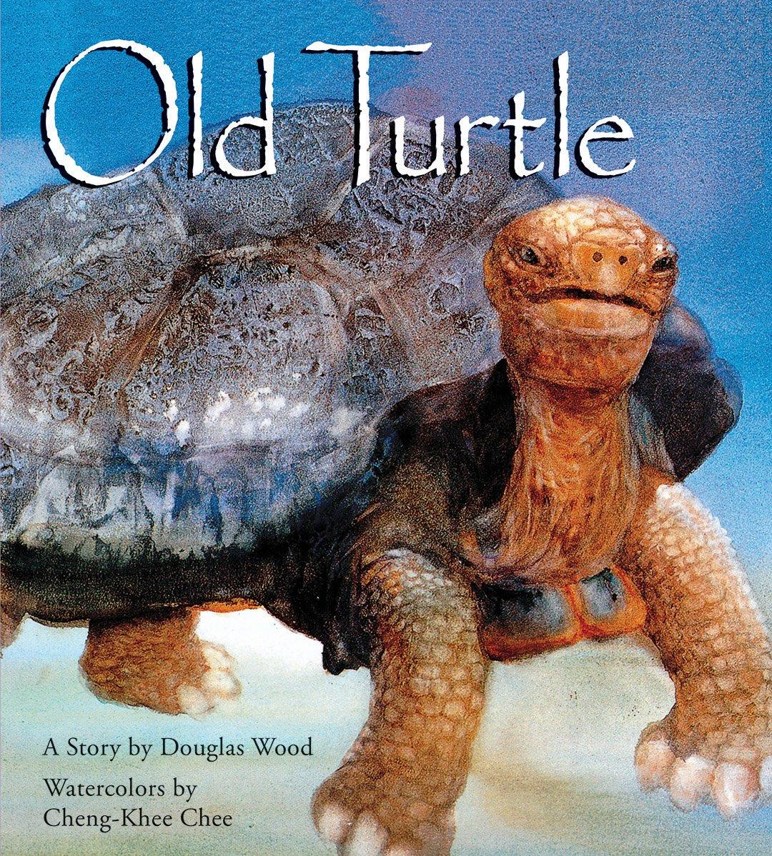 Old turtle douglas wood cheng khee chee 9780439309080 amazon old turtle douglas wood cheng khee chee 9780439309080 amazon books biocorpaavc Choice Image