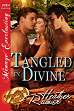 Tangled in Divine [Divine Creek Ranch 14] (Siren Publishing Menage Everlasting ) (The Divine Creek Ranch)