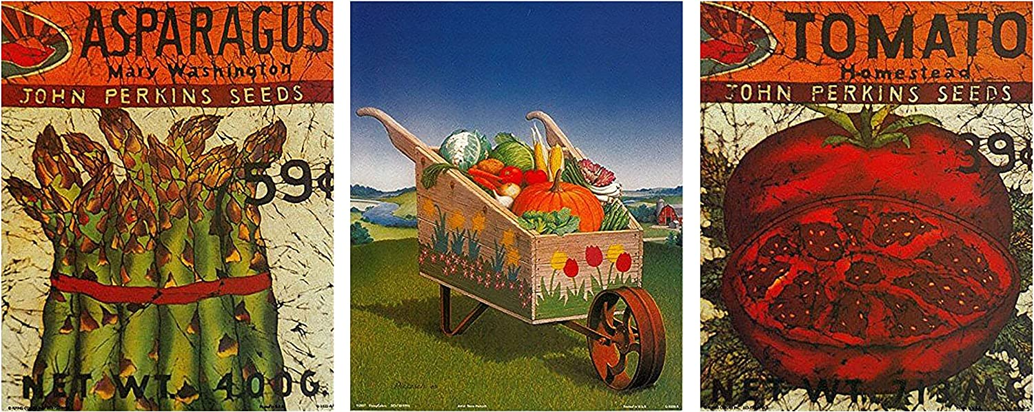 Vegetables Carrots Peppers Asparagus Kitchen Photo Wall Picture 8x10 Art Print