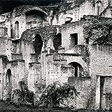 Homage to M.C.E., Roman Forum, Italy. 2005