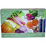 Grow Your Own Funky Rainbow Veg Kit Gift Set – 6 Extraordinary Vegetables to Grow