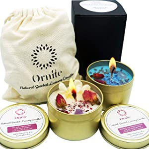 Ornite Natural Scented Crystal Candle Gift Set 100% Soy Wax 6.4Oz Organic Dry Flower Botanicals & Gemstone | Decorative Home Aromatherapy Stress Relief Relaxation Tin | Sea Salt Sage & English Pear