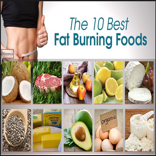 Fat burning diet best