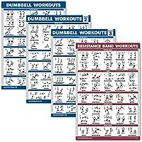 Palace Learning 4 Pack - halter workout posters volume 1, 2 & 3 + weerstandsbanden trainingsgrafiek - set van 4 posters…