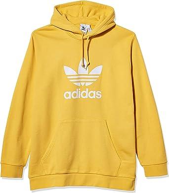 adidas Originals Trefoil Hooded Sweatshirt Pull à Capuche Homme