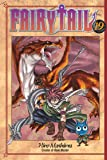 Fairy Tail 19