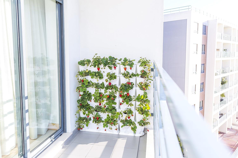 minigarden 1 Juego Vertical para 9 Plantas, Jardín Vertical ...