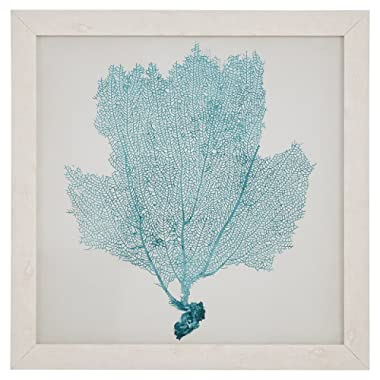 Classic Seafoam Blue Sea Fan Print, White Frame, 23  x 23