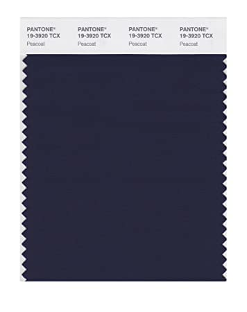 PANTONE SMART 19-3920X Color Swatch Card Peacoat - Wall Decor