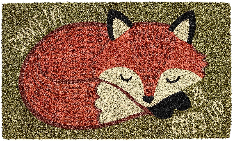 DII Natural Coconut Coir Seasonal Doormat, 18x30, Cozy Fox