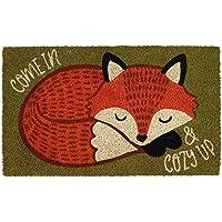 DII Indoor/Outdoor Natural Coir Easy Clean Seasonal Doormat, 18x30, Cozy Fox