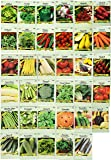 Set of 35 Assorted Vegetable & Herb Seeds 35 Varieties Create a Deluxe Garden All Seeds are Heirloom, 100% Non-GMO! by Black Duck Brand 35 Different Varieties
