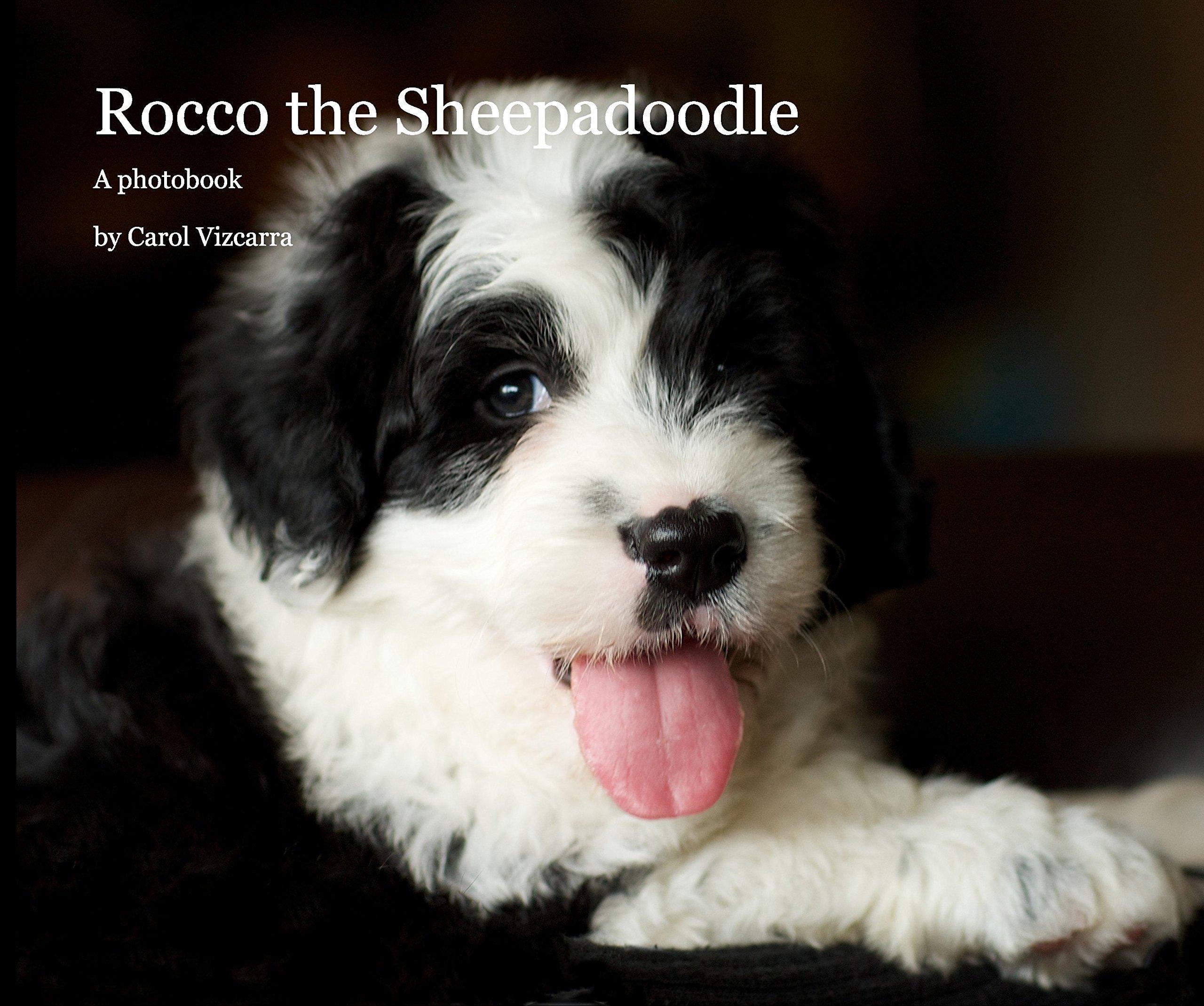 Rocco The Sheepadoodle 102 Pages Carol Vizcarra