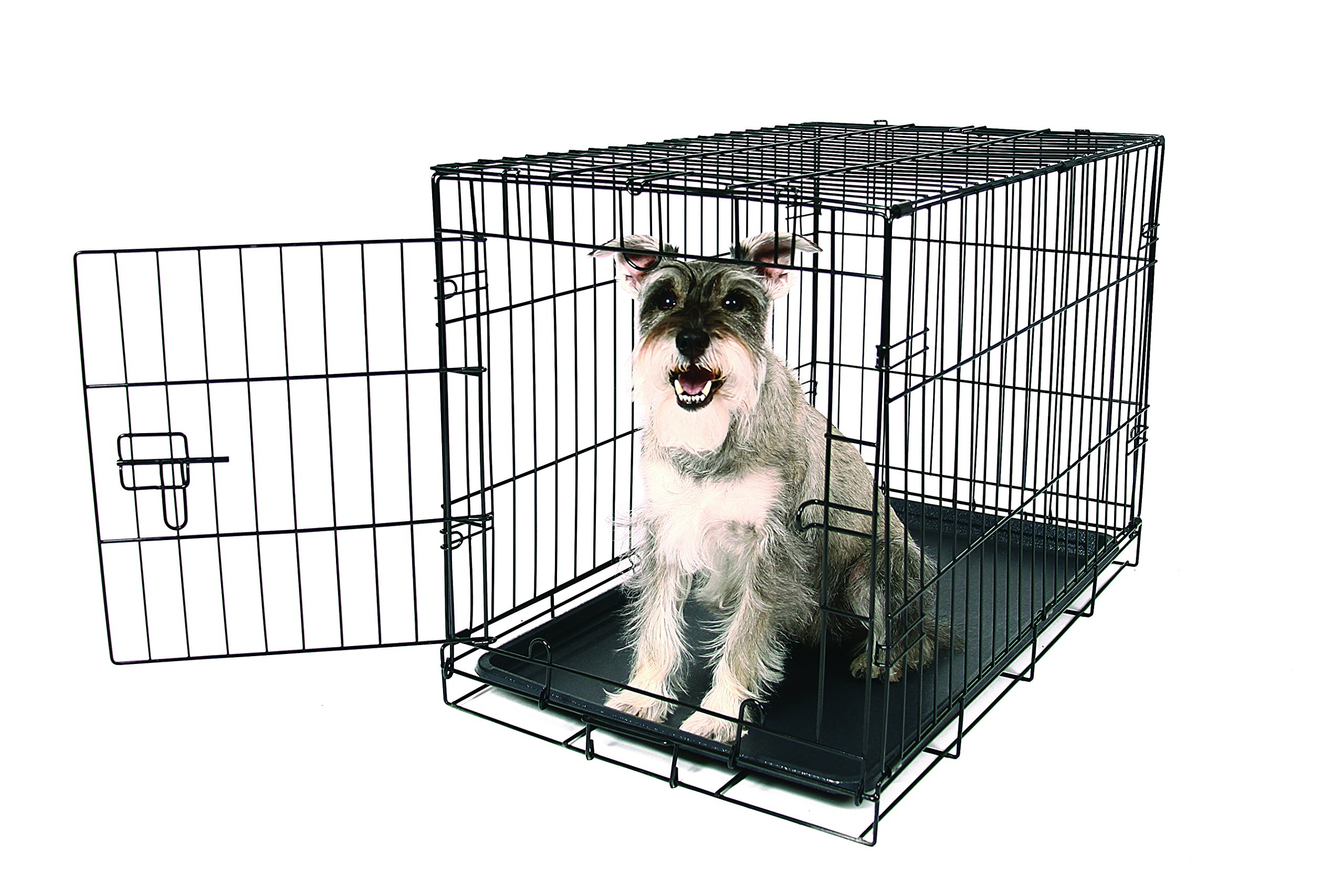 Carlson Pet Products Secure and Foldable Single Door Metal Dog Crate, Medium by Carlson Pet Products