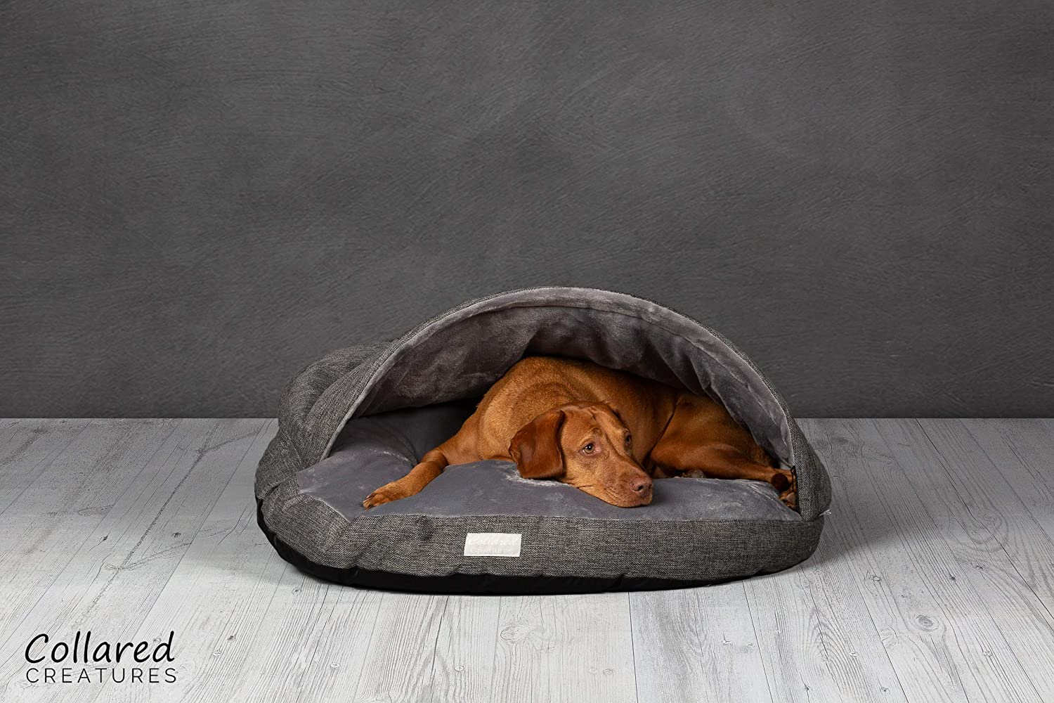 Colletto Creatures, lettino per cani a forma di caverna, grande, 889 mm, grigio, 90 cm Collared Creatures CB-LG-GR