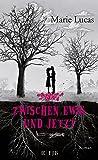 Zwischen Ewig und Jetzt: Roman (Fischer FJB (allgemein))