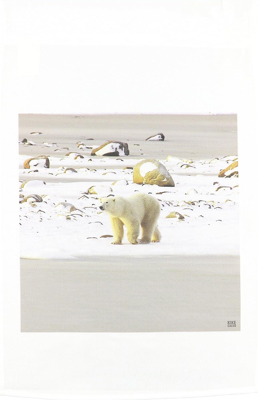 3dRose fl_10718_1 Polar Bears Garden Flag, 12 by 18-Inch