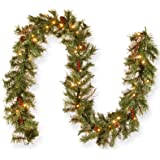 Red Berries Twigs and 100 Battery Operated Warm White LED Lights with Timer National Tree 36 Inch Glistening Pine Wreath with Cones GN19-300-36W-B